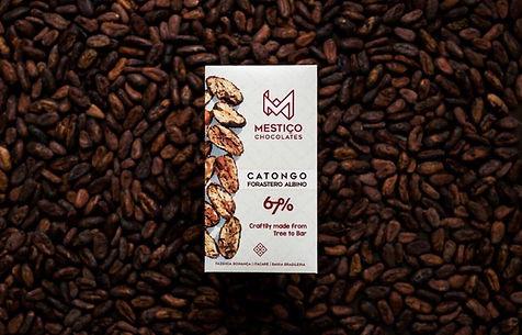67_Catongo_front.jpg