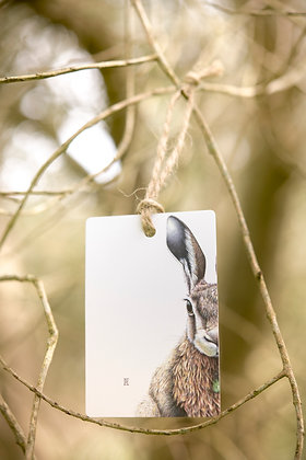 Forest Hare Gift Tag