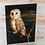 Thumbnail: Searching For England - Barn Owl
