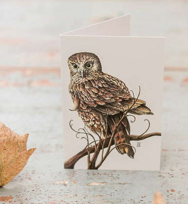 Morepork Light C6 Card