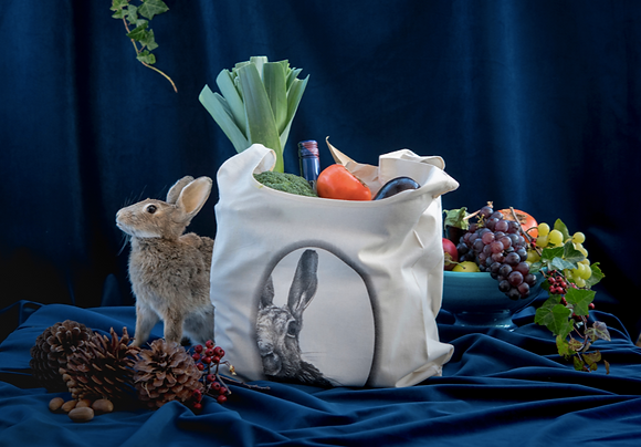 Moon Hare Organic Cotton Grocery Bag