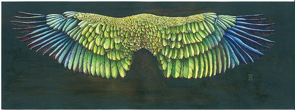 Limited Edition Kea Feather Cloak A2 Print
