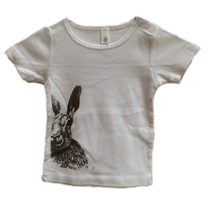 Kids' T-Shirts for ages 2, 4 & 6