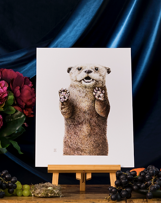 Otter   A3
