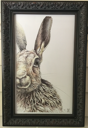 Framed SRA2 Moon Hare Limited Edition Print