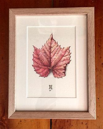 Autumn Treasures 2