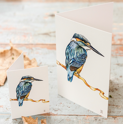 Kingfisher Cream C6 Card