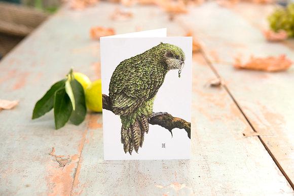 Kakapo Card C6 Card