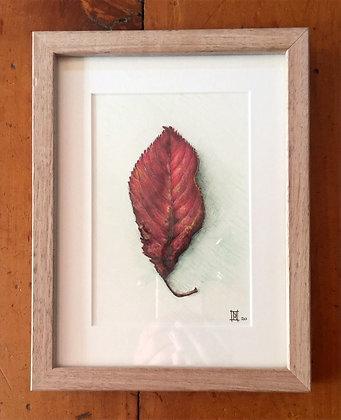 Autumn Treasures 3 - 2020