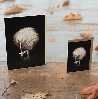 Mini White Kiwi Card