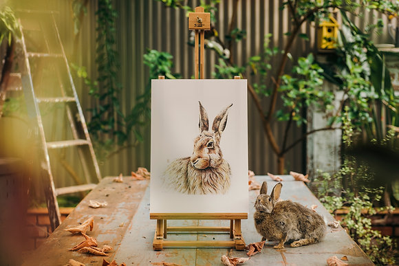 Harry the Hare A3