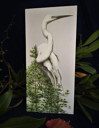 Kotuku / White Heron C6 Card