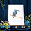 Thumbnail: Cream Kingfisher SRA2