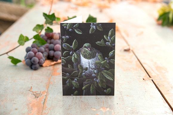Kereru (Woodpigeon) C6 Card