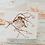 Thumbnail: The Song of the Thrush - Thrush Bird Square Card