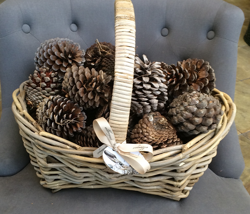 Large Basket with pinecones