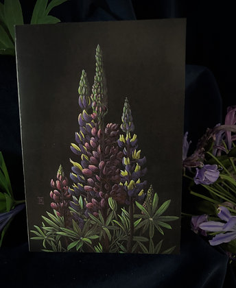 Colours - Russell Lupins C6 Card
