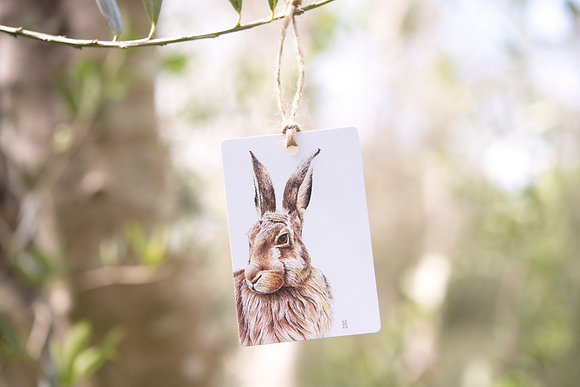 Harry the Hare Gift Tag
