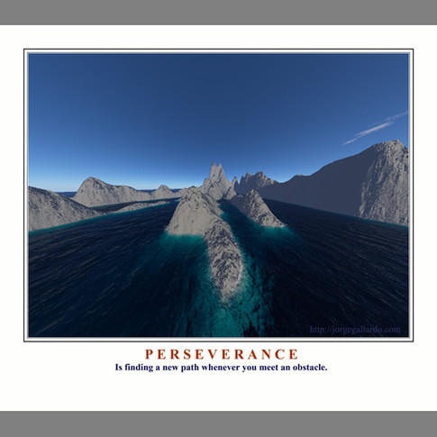 Perseverance7X7