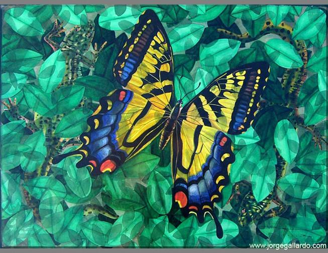 butterfly72dpi_8_5x11.jpg