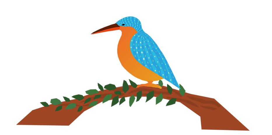 kingfisher.png