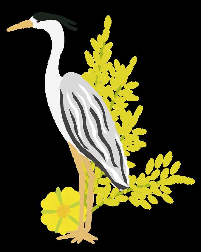heron.png