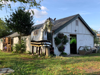 The Farm of Futures Community Survey