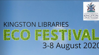 SHEDx goes to the Kingston Libraries Eco Festival