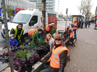 Greening the Broadway - Autumn Planting