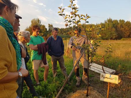 Rencontre autour de l'Agroforesterie