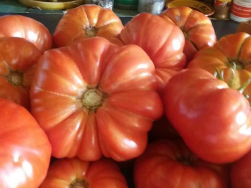 Tomates fraîches au menu
