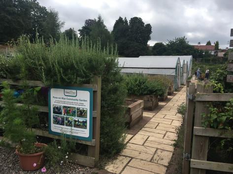 Ross Community Garden.JPG