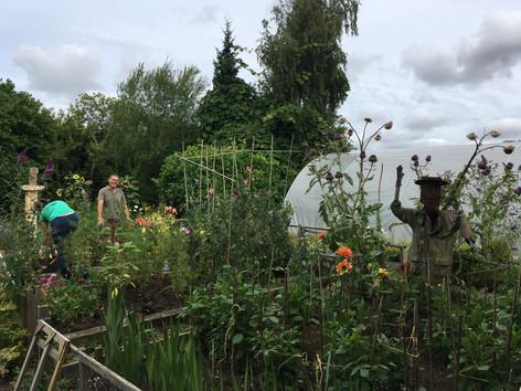 Butterfly Garden Cheltenham.JPG