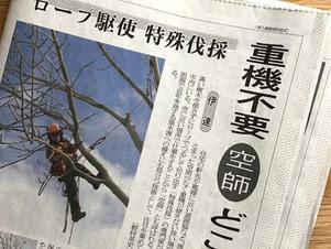 北海道の空師三浦、室蘭民報掲載の裏話