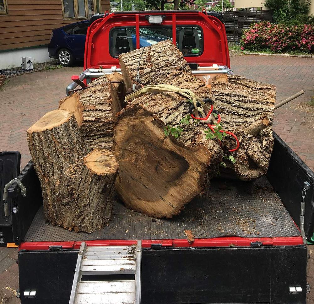 軽トラで伐採木を取りに来てくださった方