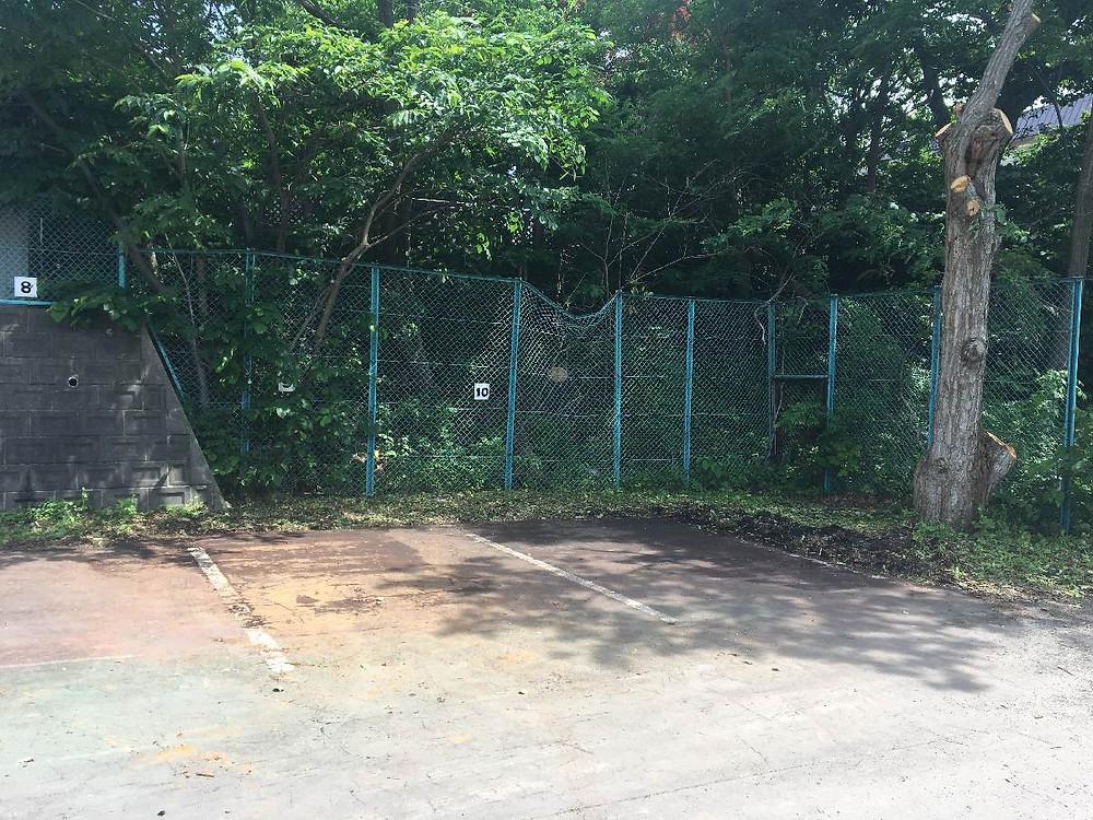 伐採後使えるようになった駐車場エリア