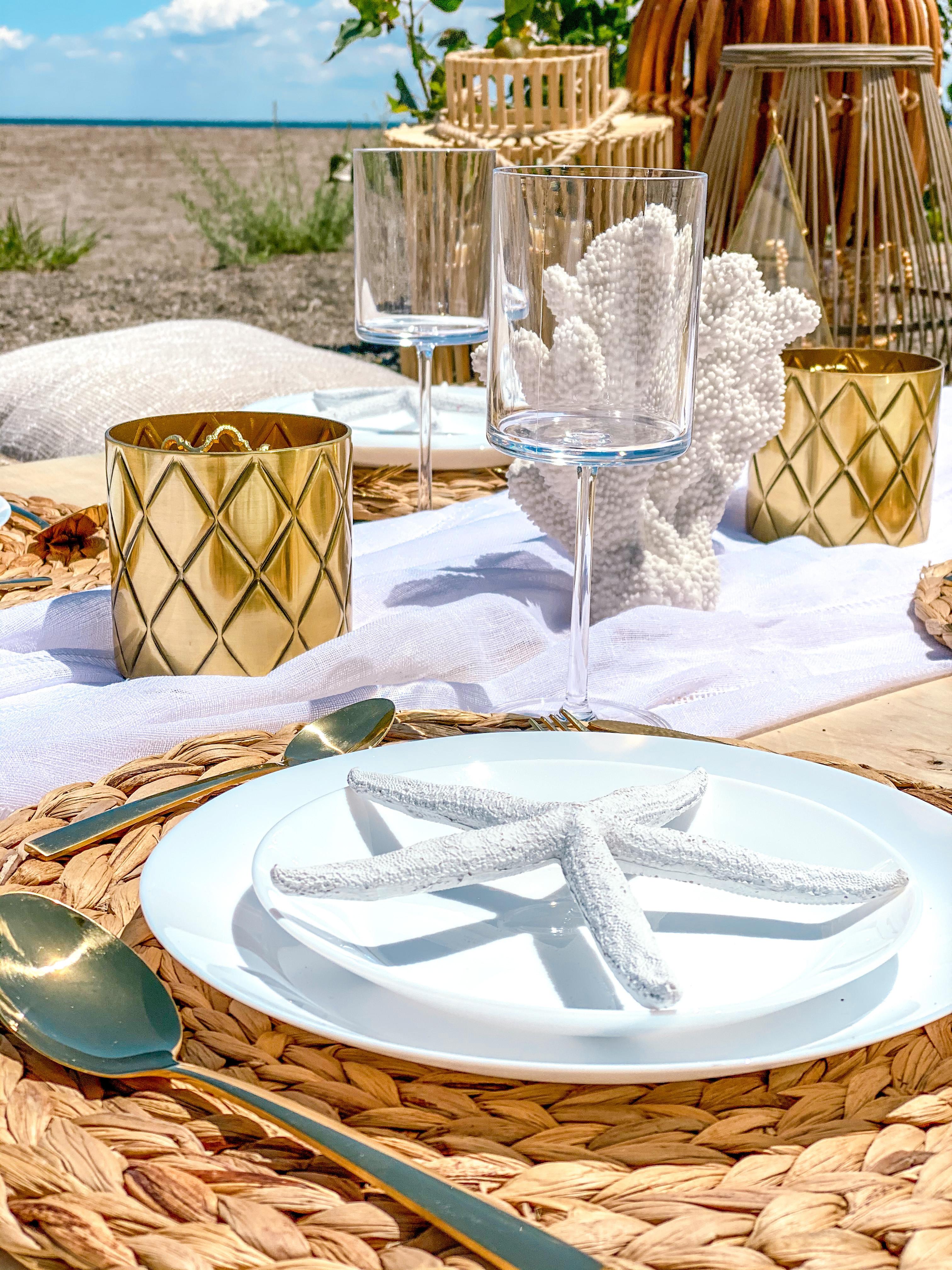 Luxe Beach Picnic (Set of 2)