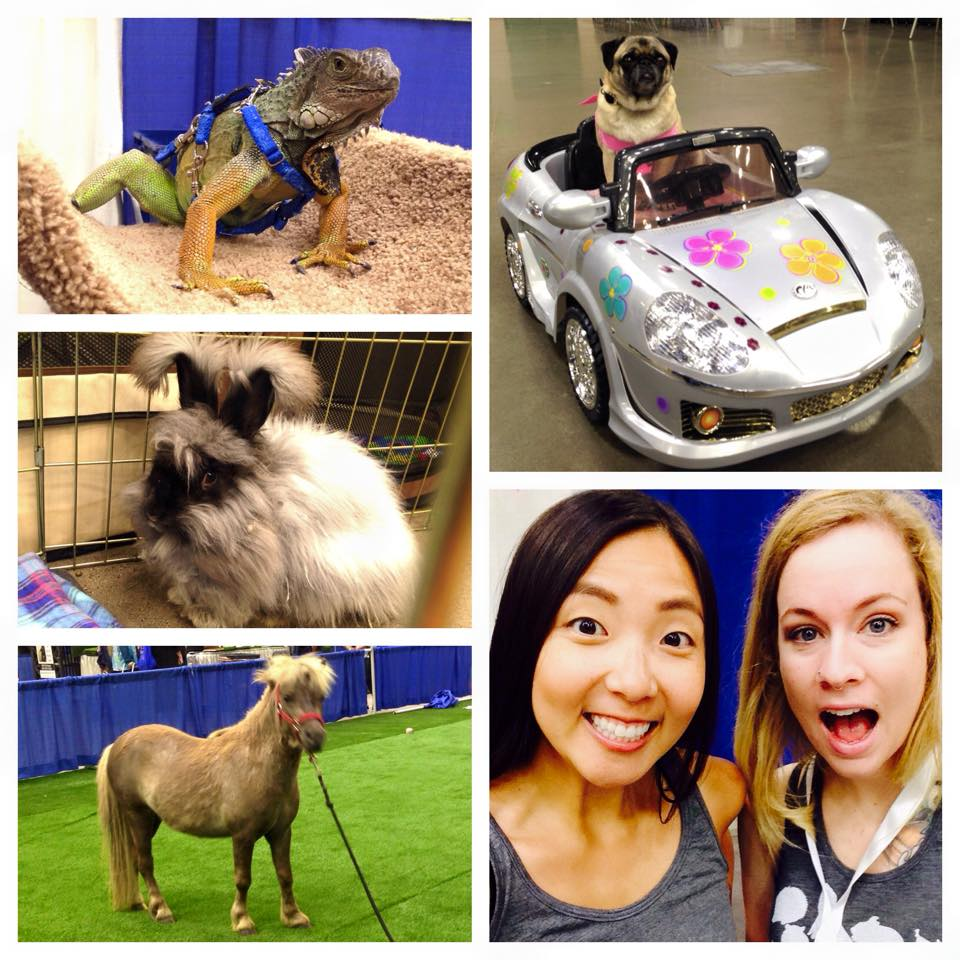 2015 Pet Expo