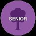 FT-senior-icon.png