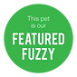 Featured-Fuzzy-Label.png