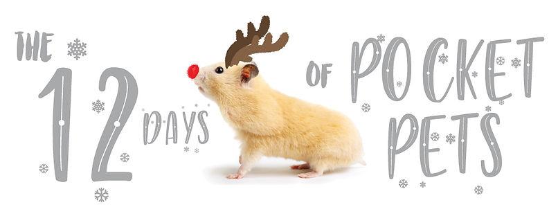 12-Days-of-Pocket-Pets-WEBSITE-header.jp