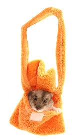 hamster in bag.jpg