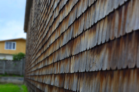 Holz.Energie.jpg