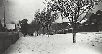 lurline street katoomba c1925 under snowq
