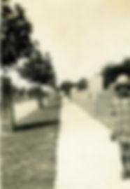 lurline street katoba c1927 with tree guards