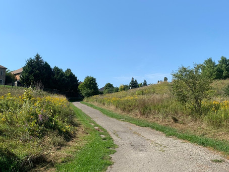 Friday Finds - Caledon Etobicoke Creek Trail