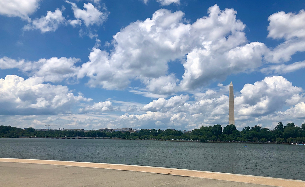 We lucked out with beautiful weather in D.C.