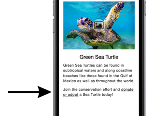 Connecting with Nature through Mobile Apps