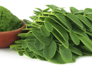 Les bienfaits du Moringa / Health Benefits of Moringa