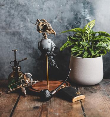 Orn Echo Finch